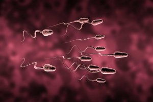 A spermiumszám növelése, avagy hogyan lehet több spermám?